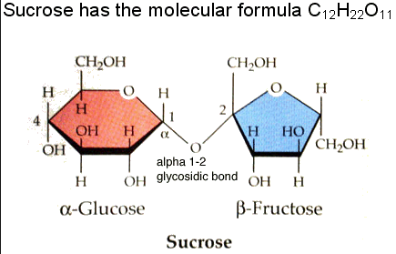 Sucrose is 1 part glucose and 1 part fructose