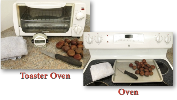 Needed to Roast Chestnuts