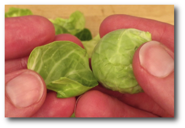 Peeling Brussels Sprouts Leaves